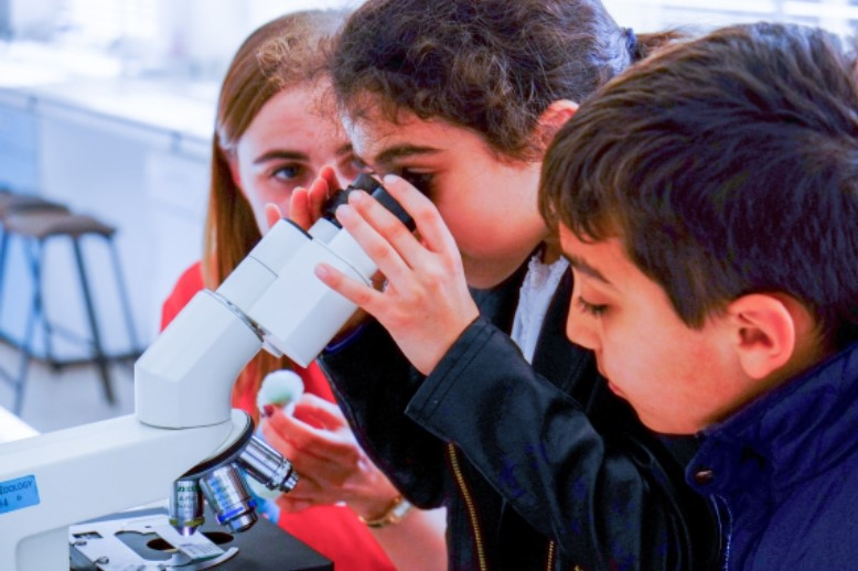 Science Festival image